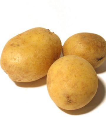 frutería arencibia